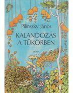 Kalandozás a tükörben - Pilinszky János