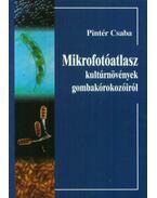 Mikrofotóatlasz kulturnövények gombakórokozóiról - Pintér Csaba