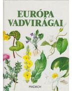 Európa vadvirágai - Podhajská, Zdenka