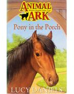 Pony in the Porch