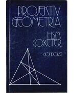 Projektív geometria