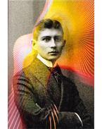 Is that Kafka? - Reiner Stach