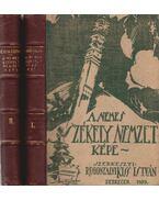 A nemes székely nemzet képe I-II. - Rugonfalvi Kiss István