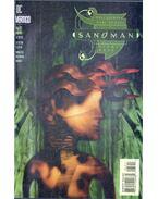 The Sandman 63.
