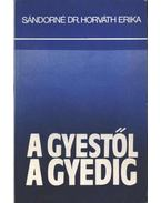 A GYEStől a GYEDig - Sándorné dr. Horváth Erika
