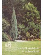 88 színes oldal az örökzöldekről és a fenyőkről