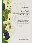 A szőlő és termesztése I.