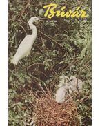 Búvár 1963. teljes évfolyam