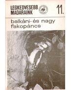 Legkedvesebb madaraink 11. - Balkáni- és nagy fakopáncs - Schmidt Egon