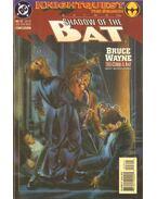 Batman: Shadow of the Bat 23.