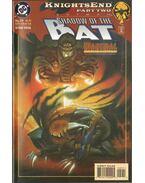 Batman: Shadow of the Bat 29.