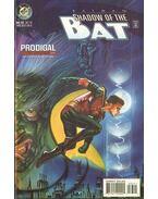 Batman: Shadow of the Bat 33.