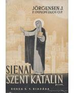 Sienai Szent Katalin