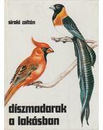 Díszmadarak a lakásban - Siroki Zoltán