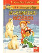 Jegesmedve-nézőben - Stamper, Judith