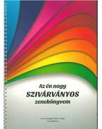 Az én nagy szivárványos zenekönyvem - Stifán Orsolya