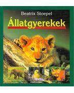 Állatgyerekek - Stoepel, Beatrix