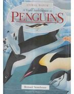A Visual Introduction to Penguins - Stonehouse, Bernard