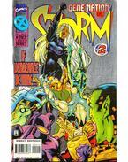 Storm Vol. 1. No. 2
