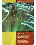Stratégiai ágazat stratégia nélkül?