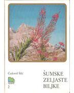 Sumske zeljaste biljke (dedikált)