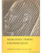Medgyessy Ferenc emlékmúzeum - Sz. Kürti Katalin