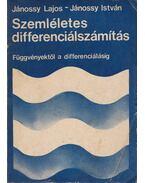 Szemléletes differenciálszámítás (dedikált)