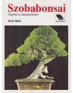 Szobabonsai