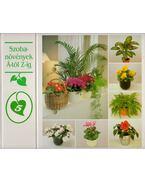 Szobanövények Á-tól Z-ig 5.