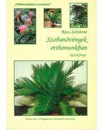 Szobanövények otthonunkban
