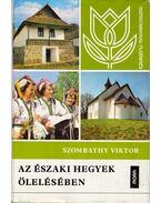 Az északi hegyek ölelésében - Szombathy Viktor