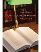 Kálvin olvasása közben - Szűcs Ferenc