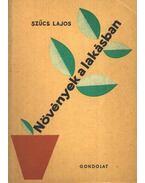 Növények a lakásban - Szűcs Lajos