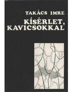 Kísérlet, kavicsokkal - Takács Imre