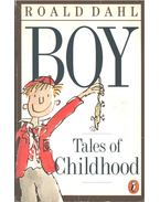 Boy Tales of Childhood