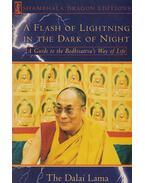 A Flash of Lightning in the Dark of Night - Tenzin Gyatso, a XIV. Dalai Láma