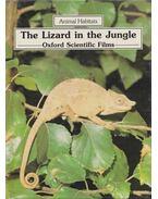 The Lizard in the Jungle