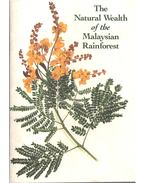 The Natural Wealth of the Malaysian Rainforest