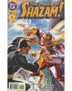 The Power of Shazam! 12.