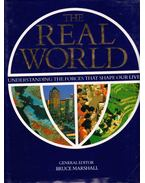 The Real World: Understanding the Forces That Shape Our Lives