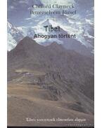 Tibet - Ahogyan történt