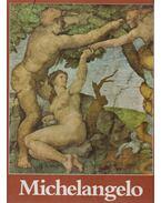 Michelangelo festői életműve - Tolnay, Charles de