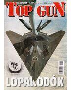 Top Gun 2001/2.