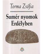 Sumér nyomok Erdélyben - Torma Zsófia