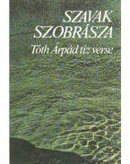 Szavak szobrásza - Tóth Árpád