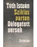 Sziklás parton - Tóth István