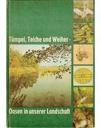 Tümpel, Teiche und Weiher - Oasen in unserer Landschaft