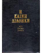 Új Testamentum rövid magyarázatokkal (görög)
