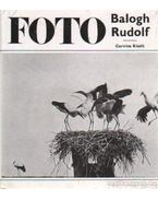 Balogh Rudolf munkássága - Vajda Ernő