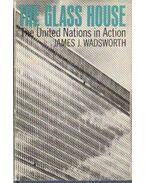 The glass house - Wadsworth, James J.